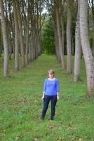 C in trees