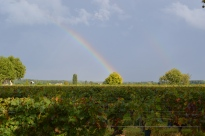 Rainbow at the end