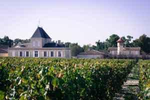 Chateau+vines