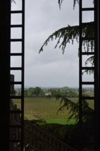 The vineyards at Franc Mayne